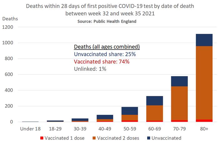 COVID 19 Todesfaelle Great Britain KW32 36 Impfstatus